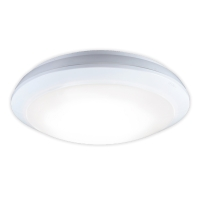 Outdoor Microwave Sensor Ceiling Light