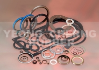 Custom Oil Seal, O-ring, VA, Gamma Seal, Gasket