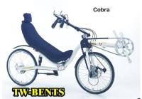 COBRA導彈