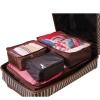 The traveler luggage organizer