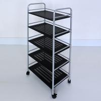 Activities storage shelf car