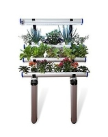 Wall mounted hydroponic indoor garden