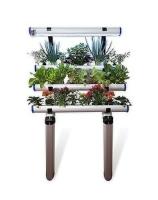 Wall mounted hydroponic indoor garden