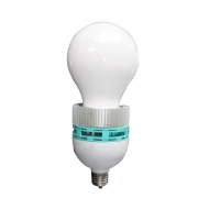 Cens.com LED Bulbs NINGBO SHENGSHINI ELECTRONIC CO., LTD.
