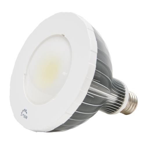 LED PAR Lamp