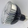 PAR30 Light Source