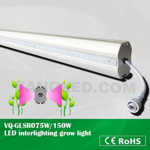 LED Interlighting Grow Light