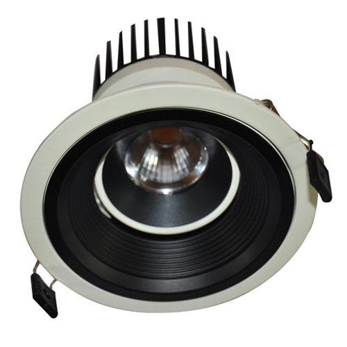 LED Canister Light