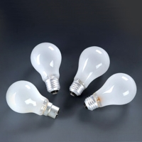 Incandescent Lamp (Frosted)