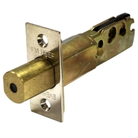 Deadlocking or spring Latch