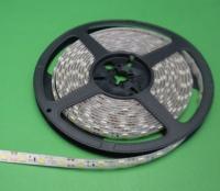 Cens.com LED Light Strips HENZHEN RAYKENG TECHNOLOGY CO., LTD.