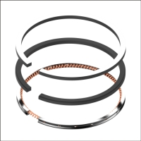 Cens.com PISTON RING-PEUGEOT 206 IPARTS INTERNATIONAL LTD. (TAGA)