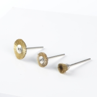 Brass Brushes mounted