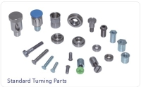 Standard Turning Fastener