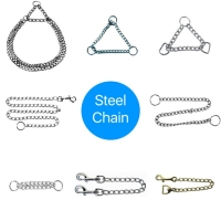 Cens.com Chain (Steel) DarwinGene Intl., Co., Ltd.