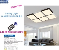 2.4G RF Remote high end Ceiling Light