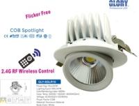 2.4G RF Remote Spot Light