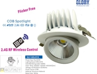 2.4G RF Remote Spot Light