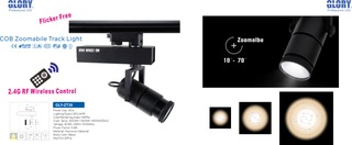 2.4G RF Remote Zoomable Track Light