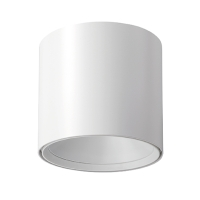 Ceiling Light (Standard )