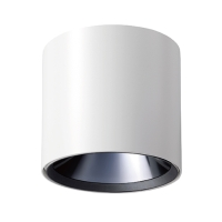 CENS.com Ceiling Light (Standard )