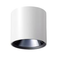 Ceiling Light (Standard )