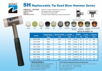 SH Replaceble tip dead blow hammer