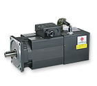 Induction Servo Motor - SF(IP54) Series