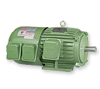 Inverter Duty Motor - VFEF (insulation Class H)