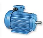 IEC Motor AM (Aluminum) Series - AMEF