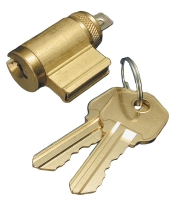 BRASS CYLINDER WITH 2 KEYS