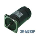 GR-M29SP/SGS