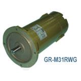 GR-M31RWG