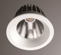 LED Down Light