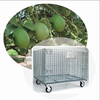 Mesh Cages Trolley for Goods Transportation