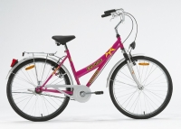 26 Single Spd Lady`s City Bike