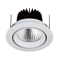 WHITE BLACK RECESSED CRI80 EPISTAR 13W COB LED DOWNLIGHTS