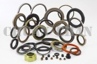Oil Seal for Truck, Bus