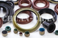 Oil Seal for Bearing