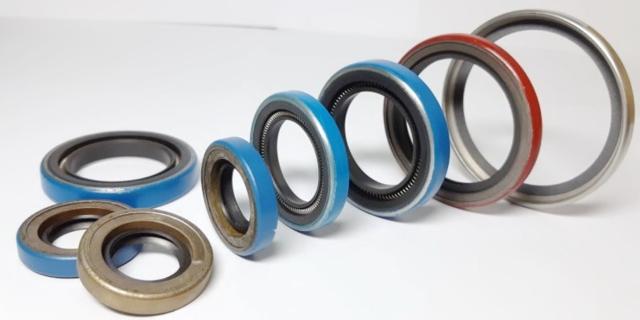 PTFE oil seals
