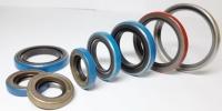 CENS.com PTFE oil seals