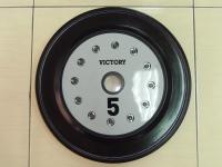Victory 5KG Bumper Plate