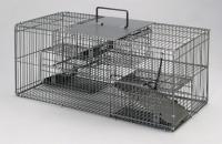 Cens.com 捕鼠器 高洋國際企業有限公司