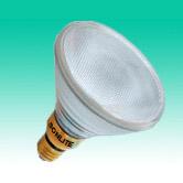 Halogen PAR38 Lamp