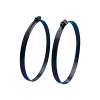 Worm Drive Hose Clamps Special Surface Treatment