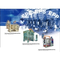 Special Precision Mold for EPS / EPE / EPP Purpose