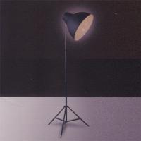 Floor Lamps / Standing Lamps