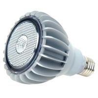 8W PAR30 Lamp