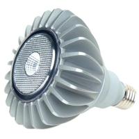 10W PAR38 Lamp