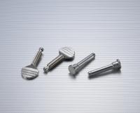 thumbs screws/Furniture screws